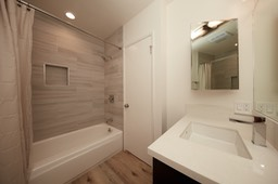 Master Tub Shower